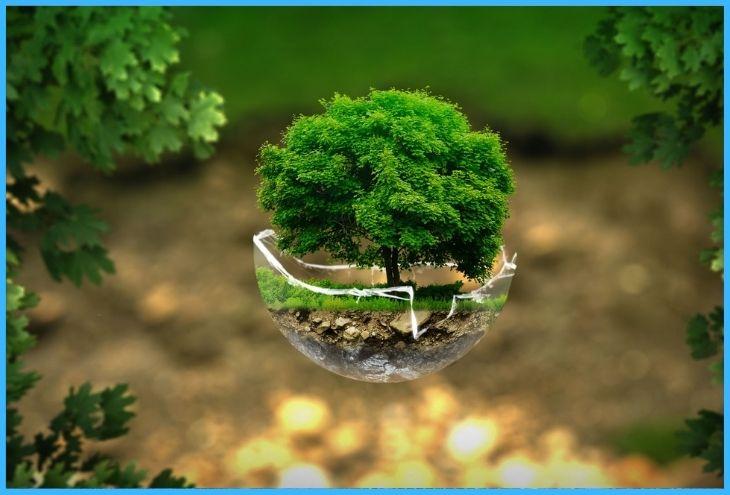 troska o środowisko